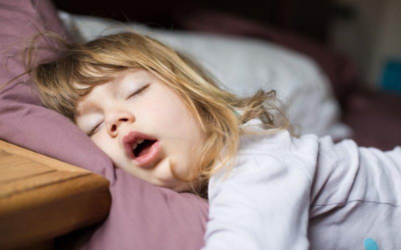 sleep apnea hereditary basis